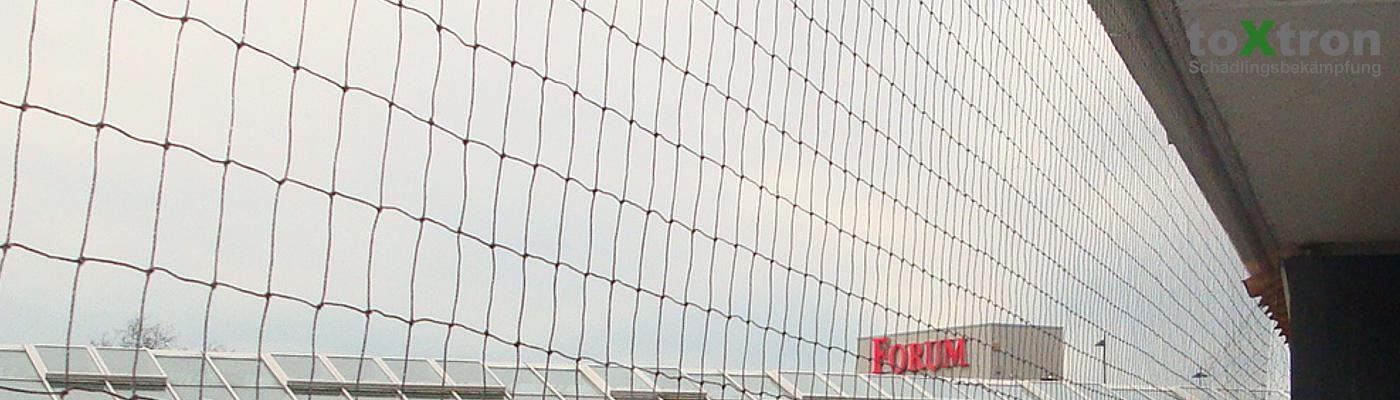 vogelnetze-befestigen-üeberdachungen