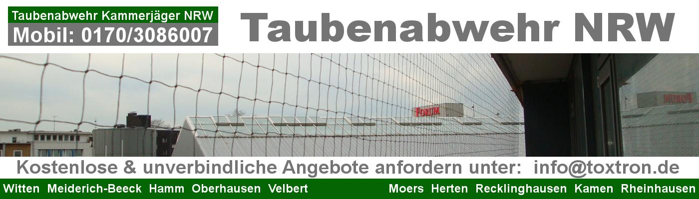 Taubenabwehr/ Kammerjäger NRW
