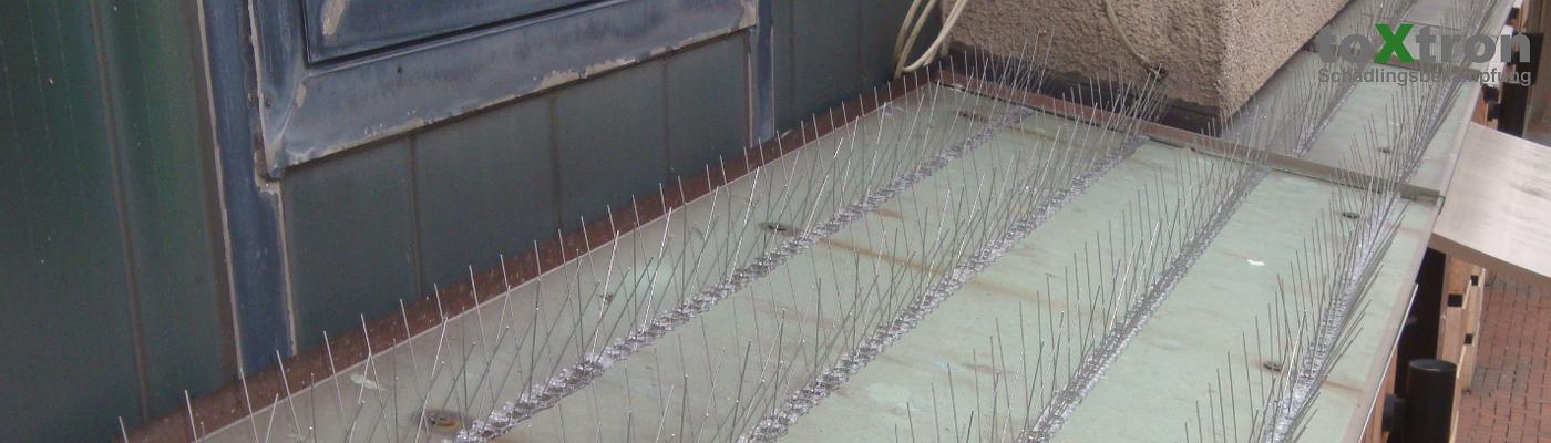 taubenabwehrnadeln-vogelspikes-befestigen.toxtron
