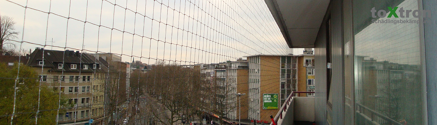 taubenetze-anbringen-balkon-toxtron